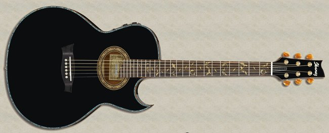 Guitarra acústica Steve Vai Signature Euphoria
