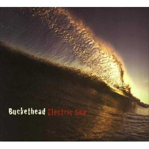 "Electric Sea ""Buckethead"""