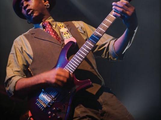 Catálogo de guitarras Parker 2015